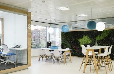 Diseño planta azul